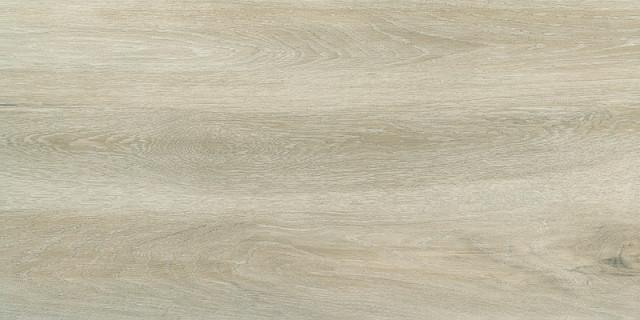 Mrazuvzdorná dlažba v imitaci dřeva FOREST Birch 30 x 60 cm