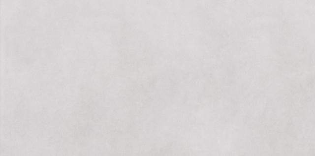 Dlažba imitace betonu ESSENCIA, 30 x 60 cm, Šedobílá - DAKSE339