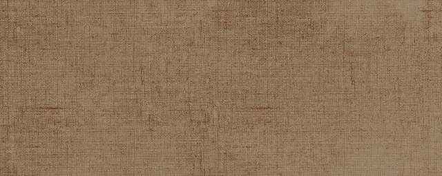 Lesklý obklad ROYAL COOPER 20 x 50 cm