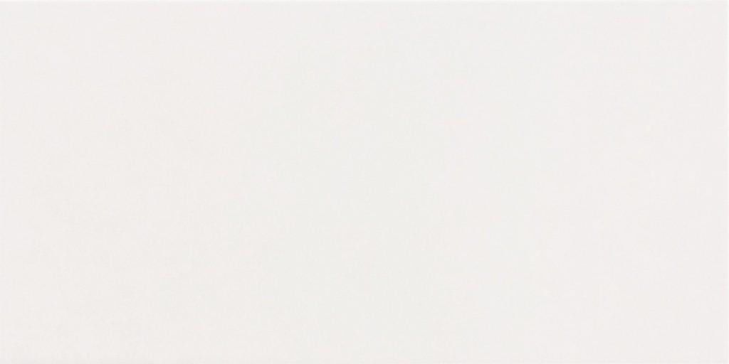 Interiérový obklad LIVING Bílý 20 x 40 cm