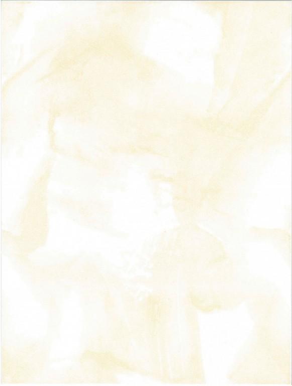 Interiérový obklad IVANA Světle oranžový 25 x 33 cm