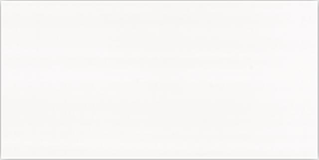 Bíly obklad WHITE Lesk 20 x 40 cm